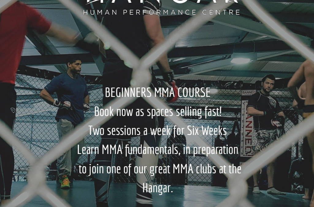 Beginners MMA Course Spring Block
