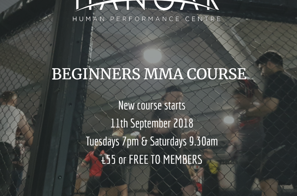 New Beginners MMA Course Starts 11th September 2018