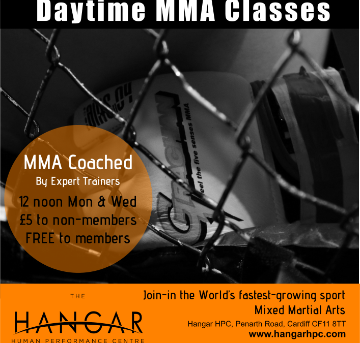 Daytime MMA Classes Added
